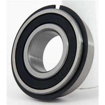 REXNORD ZT135125MM  Take Up Unit Bearings